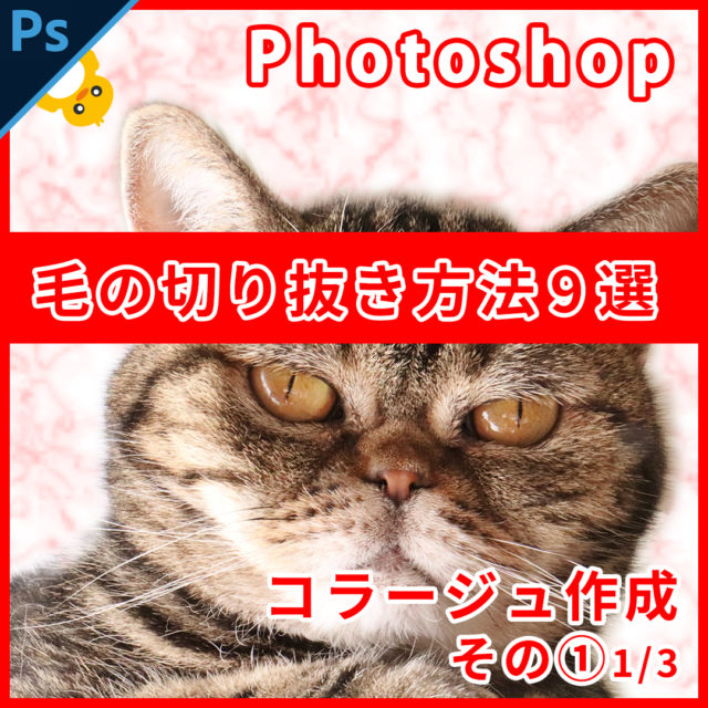 Photoshop毛の切り抜き方法9選【コラージュ制作1】1/3
