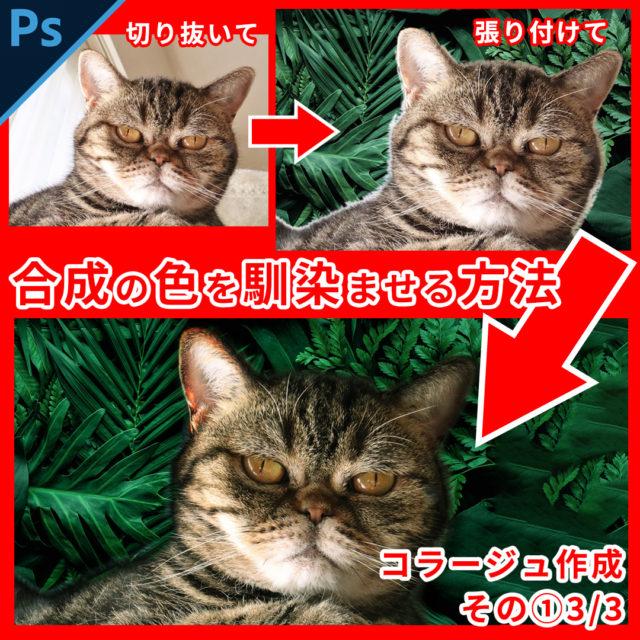 Photoshop合成画像の色を馴染ませる方法【コラージュ制作1】3/3